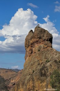 A pinnacle at Pinnacles