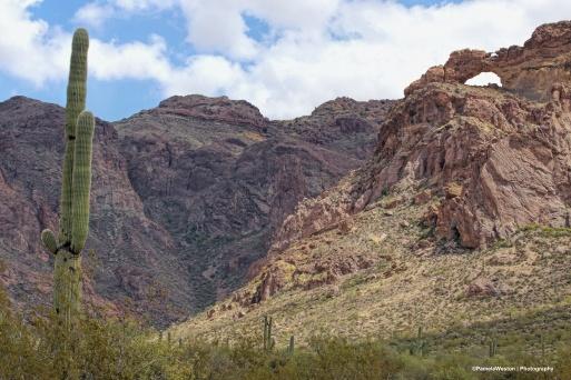 Arch Canyon
