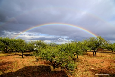 Rainbow at the campground