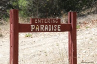 Entering Paradise