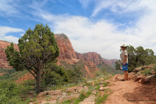 Hike to the end of Kolob Canyons overlook
