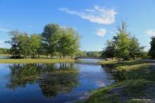 Darrien Lake-NY