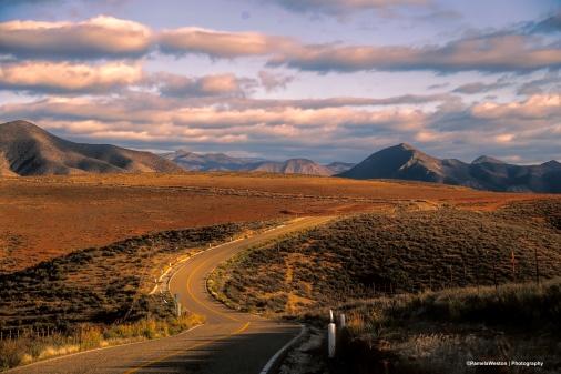 Road up to Sierra de San Pedro Martir