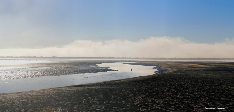 The amazing tidal flats and pools