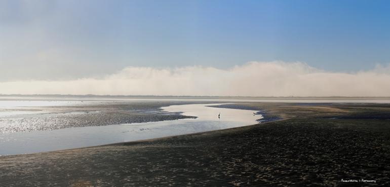 The amazing tidal flats and pools