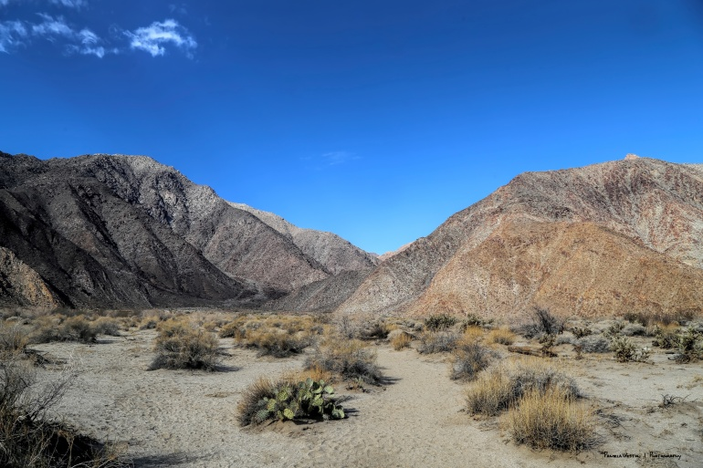 The start of the hike up the canyon