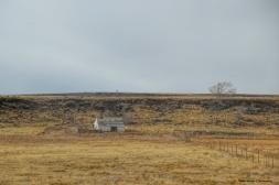 Leaving the grasslands behind