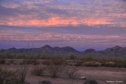 Sunrise at Kofa