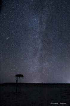 Under the Milky Way tonight..