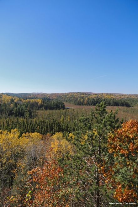 View from the visitors center, Algonquin Park
