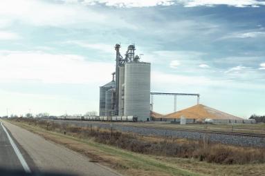Mountains of corn