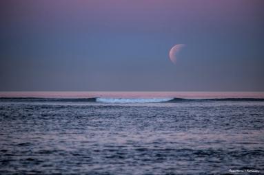 Goodbye moon...