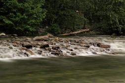 Capilano River