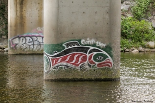 All along the Capilano River