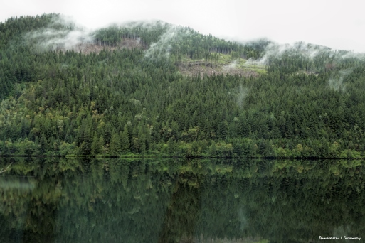 Gray day and wonderful reflections-Trans Canada 1
